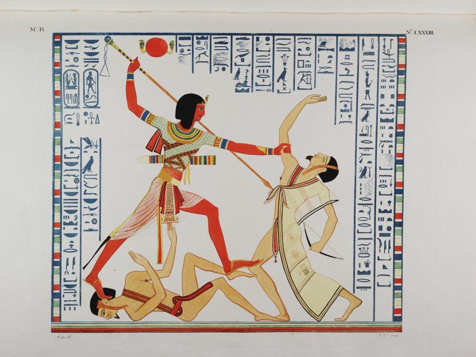 науката египтология