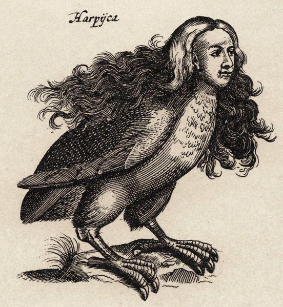 Харпиите между митологията и зоологията